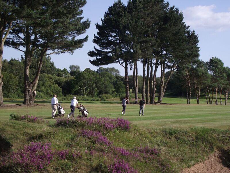 Golftheroyal