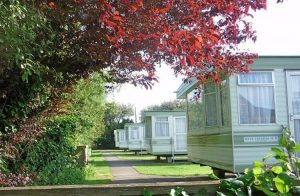 dinosaur farm holidays isle of wight Self Catering caravans