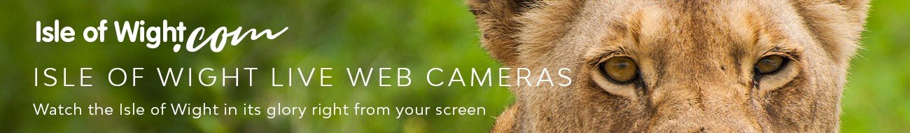 isle of wight live web cameras
