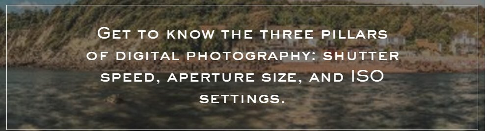 theroyalphotography